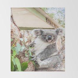G'day, Mate! Koala, Australia Throw Blanket