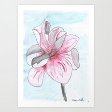 Magnolia Flower watercolor Art Print
