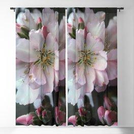 Almond flowers bouquet Blackout Curtain