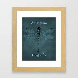 Dragonfly Anisoptera Framed Art Print