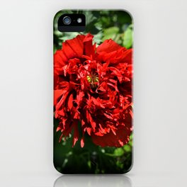 Crimson Peony Poppy iPhone Case