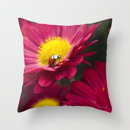 Little Red Ladybug Throw Pillow
