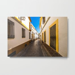 Córdoba Streets Metal Print