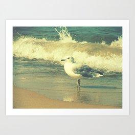Lake Michigan Seagull Art Print
