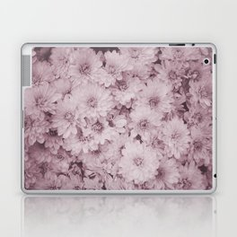 photography and illustration of daisy flowers in sweet pink perfect for clothes, gifts, products. Laptop & iPad Skin