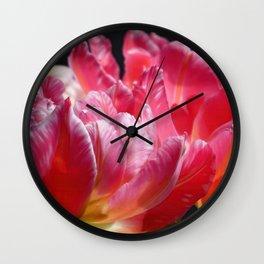 Pink Parrot Tulips close up VI Wall Clock