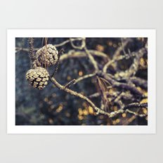 Backyard Art Print