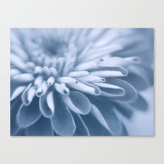 Snow Touch Canvas Print