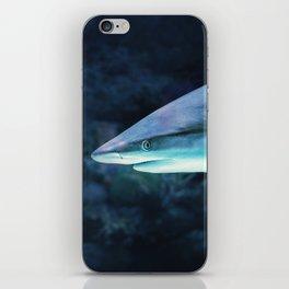 Gray Shark Head (Color) iPhone Skin