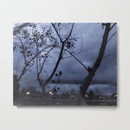 Between the Tree Metal Print
