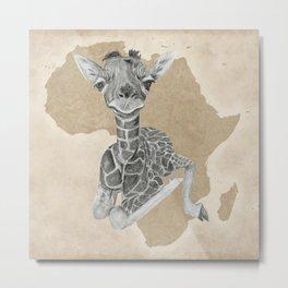 Baby Giraffe II Metal Print