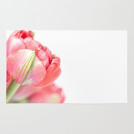 Peony Tulip... (2) Rug