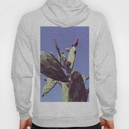 01_Cactus#retro#film#effect Hoody