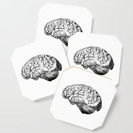 Brain Anatomy Coaster