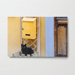 Mail Cat Metal Print