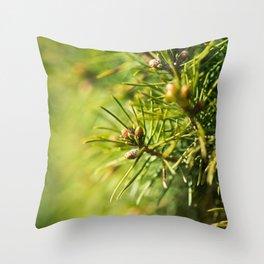 Fir tree green background Throw Pillow