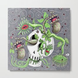 skull pot with carnivorous plants Metal Print