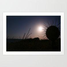 Caribbean Sunset Cabo de la Vela (Jepira)  Art Print