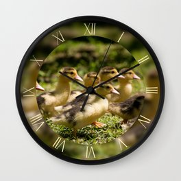Yellow ducklings running fast Wall Clock