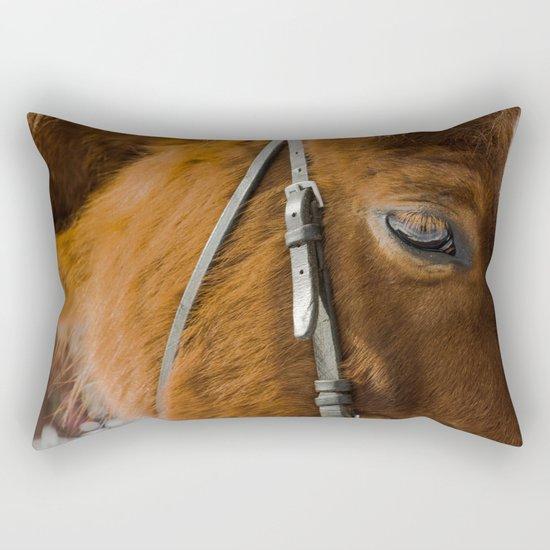 HORSE EYE Rectangular Pillow