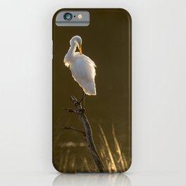 Golden Light Great Egret iPhone Case