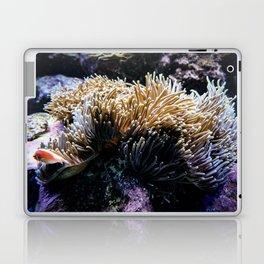 Understated Anemone Laptop & iPad Skin