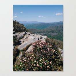 Tablerock Mtn. Spring Canvas Print