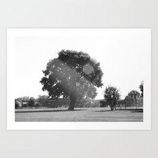 Tree in the Sun Art Print