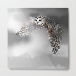 flying owl (tyto alba) Metal Print