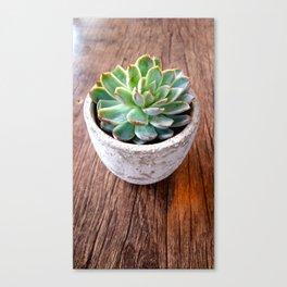 cactus phone case Canvas Print