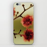 asian iPhone & iPod Skins featuring asian by Susigrafie
