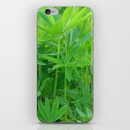 Flowers Izby Garden 3 iPhone Skin
