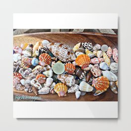 Shells of Sunrise Metal Print