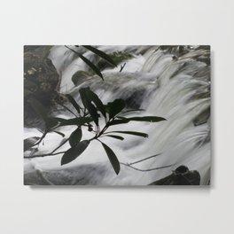 Cosby Stream Metal Print