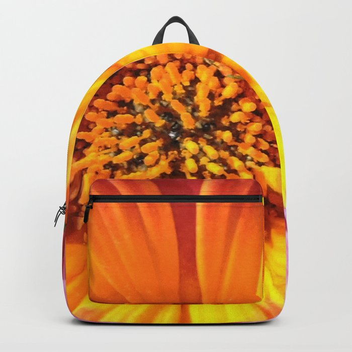 A March 1st Colorburst Backpack