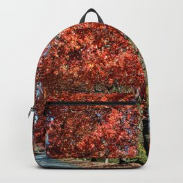 We Welcome You to Fall Backpack