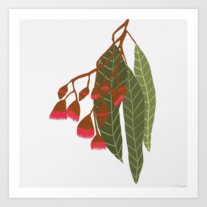 Flowering Gum - White Art Print