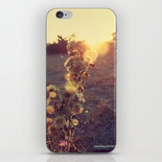 After Glow iPhone & iPod Skin