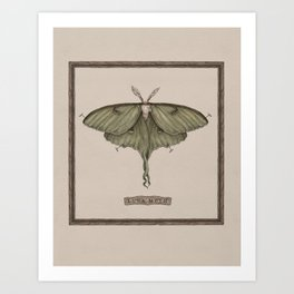 9142ccc50 Butterfly Art Prints | Society6