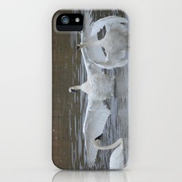 Swan Dance - Two out of Three iPhone Case