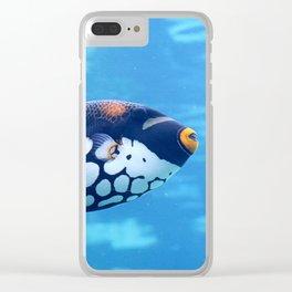 Clown triggerfish Clear iPhone Case