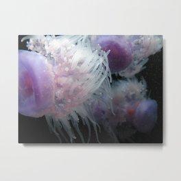jelly Metal Print