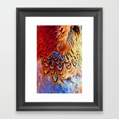 Pheasant Feathers Framed Art Print