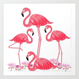 Flamingos 4 Art Print