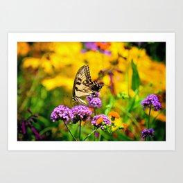 Colorful Summer Art Print