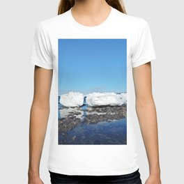 Icebergs along the Tidal shelf T-shirt