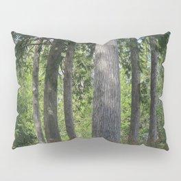 Pointe Trees 11 Pillow Sham