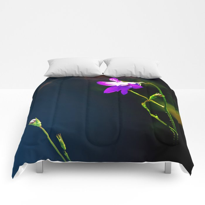 Confrontation Comforters