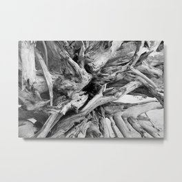 Black and White Driftwood Metal Print