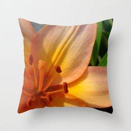 Orange Lily Closeup Throw Pillow